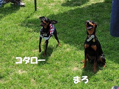 s-滋賀オフ会2016① (7)