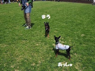 s-滋賀オフ会2016① (21)