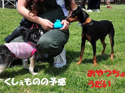 s-滋賀オフ会2016① (24)