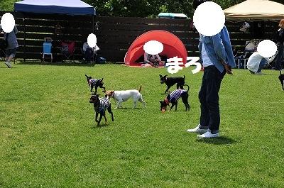 s-滋賀オフ会2016① (37)