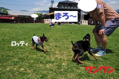 s-滋賀オフ会2016① (44)