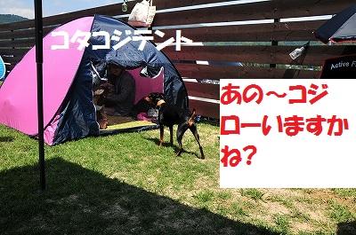 s-滋賀オフ会2016① (48)