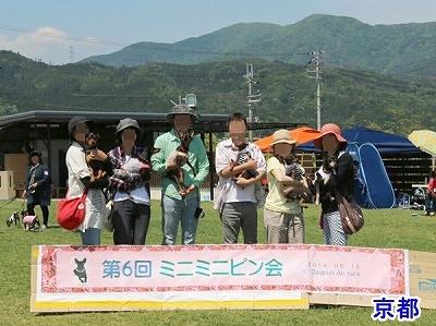 s-ミニピン滋賀③ (17)