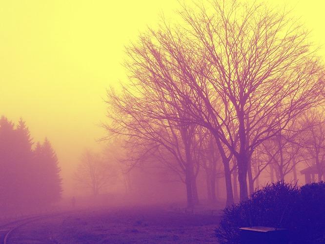 霧3393