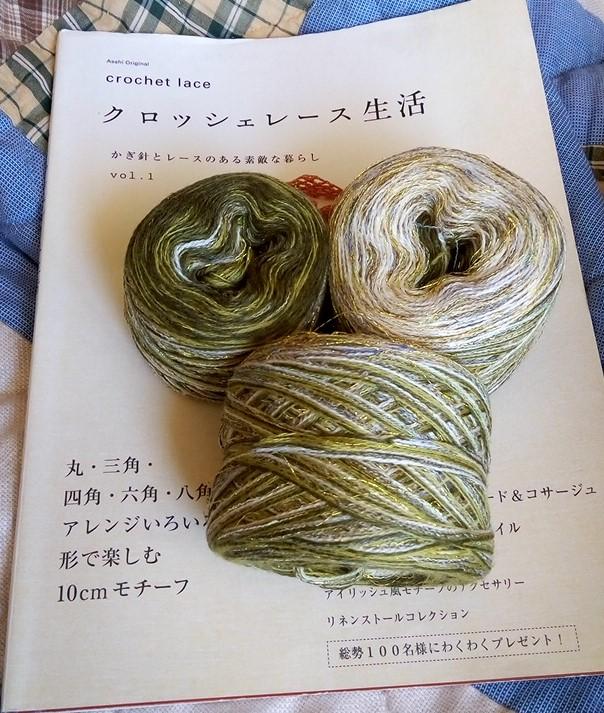 緑ジレ (9)