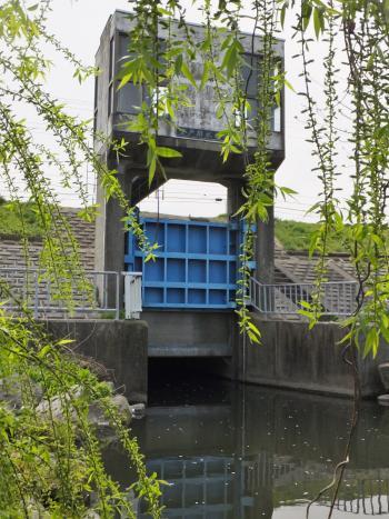 登戸排水樋管