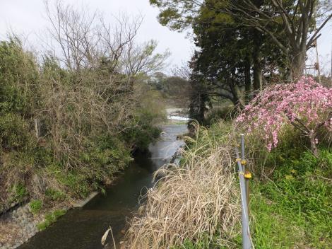 藤木沢河口