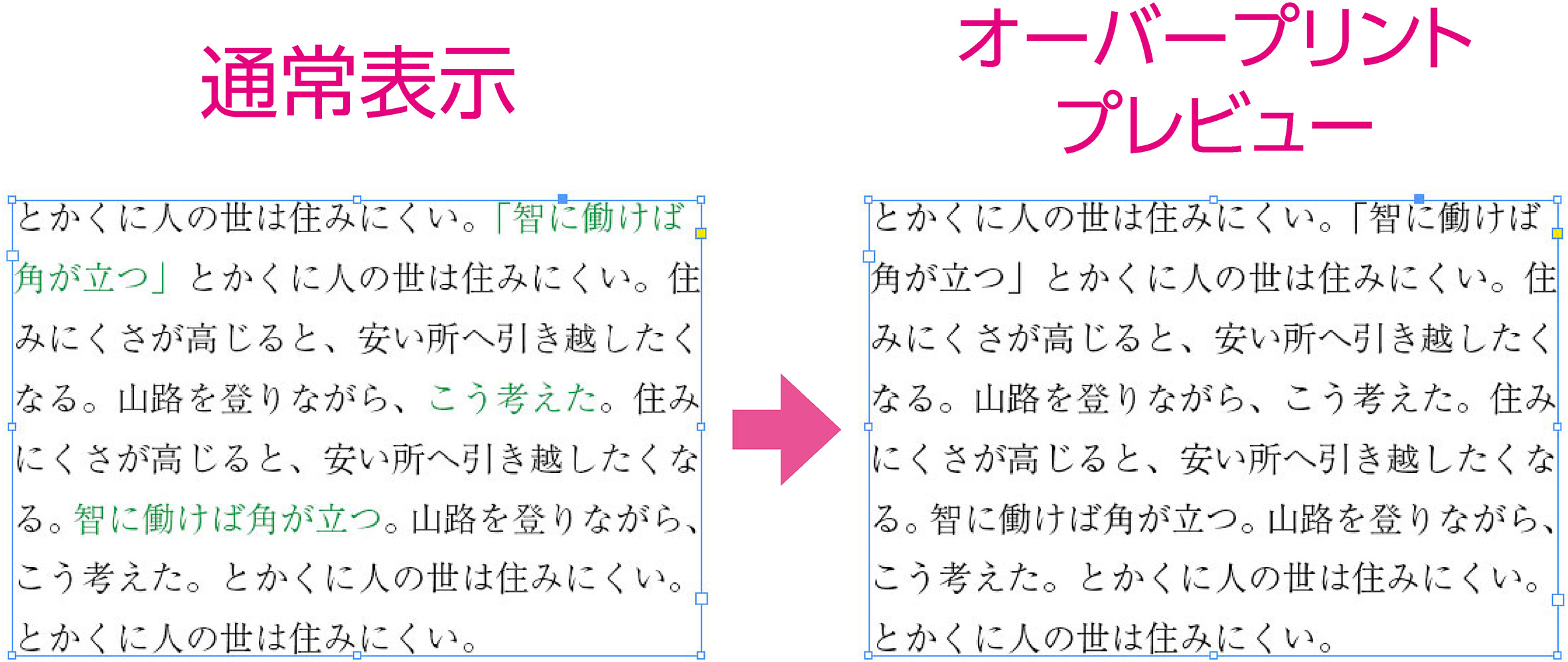 su_06.jpg