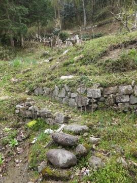 160410日吉の山