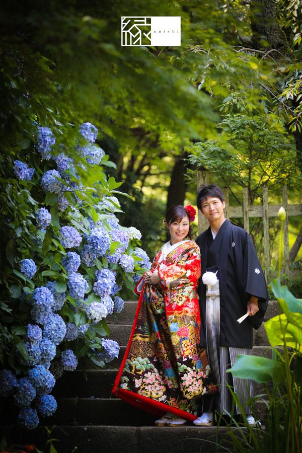 鎌倉紫陽花和装前撮り縁15