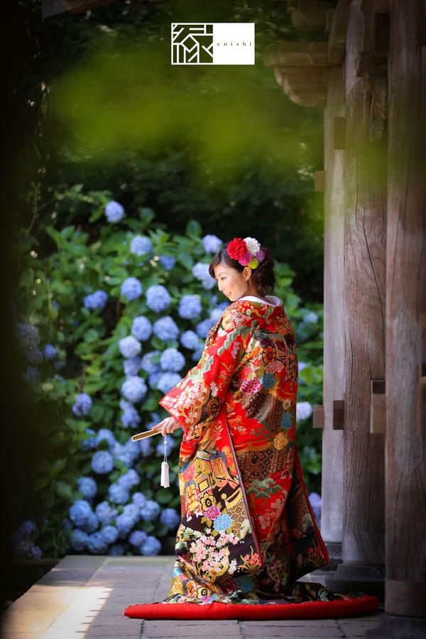 鎌倉あじさい和装前撮り縁17