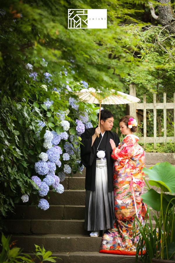鎌倉紫陽花和装前撮り縁08