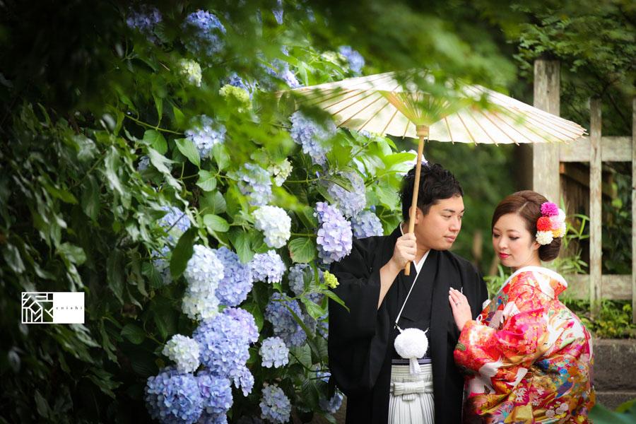 鎌倉紫陽花和装前撮り縁09