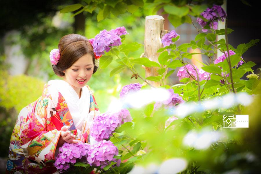 鎌倉紫陽花和装前撮り縁10