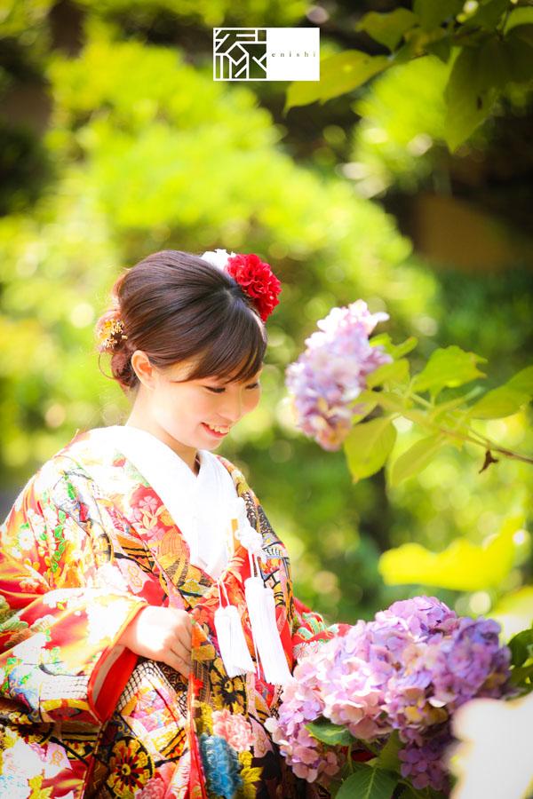 鎌倉紫陽花和装前撮り縁16