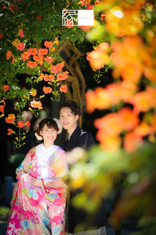 鎌倉紫陽花和装前撮り縁18
