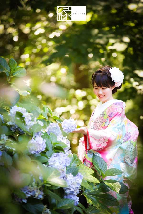 和装前撮り鎌倉縁紫陽花08