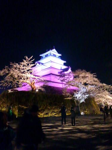2016夜桜4