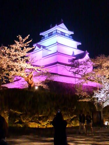 2016夜桜5