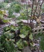 4月11日雪