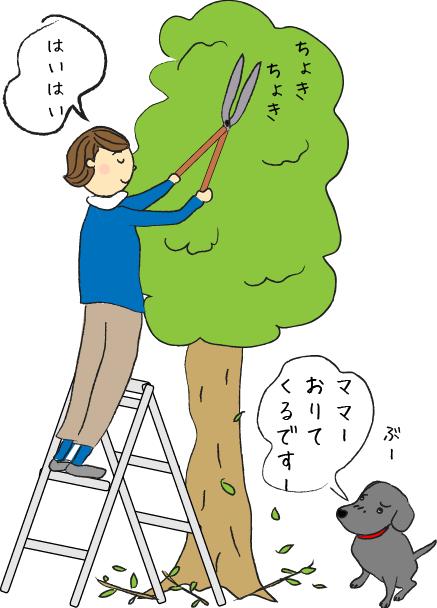 木とラブラドール