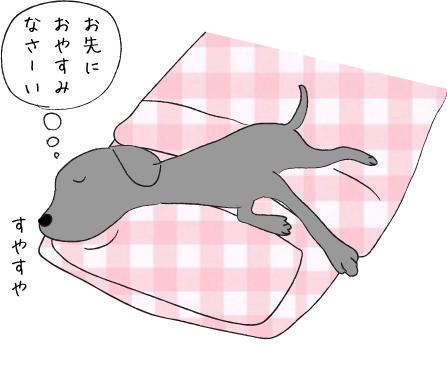 枕で眠るラブラドール