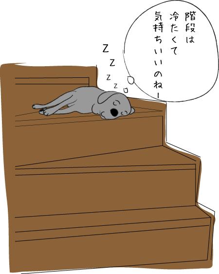 階段で眠るラブラドール