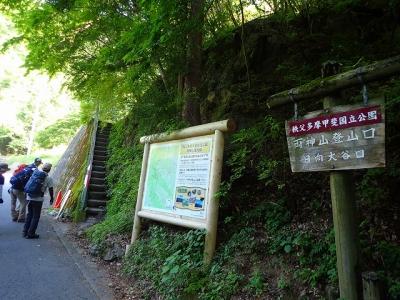 5月29日両神山定例山行