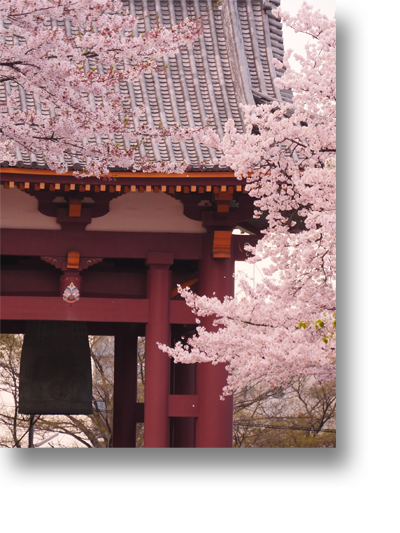 池上本門寺160411