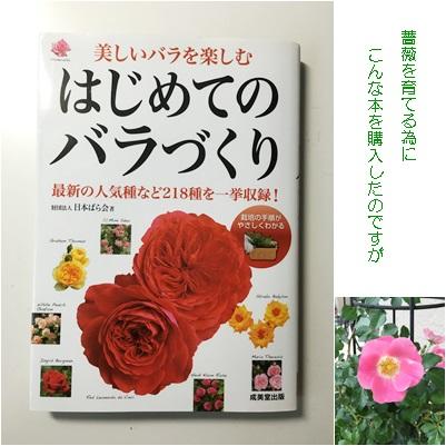 薔薇の本を