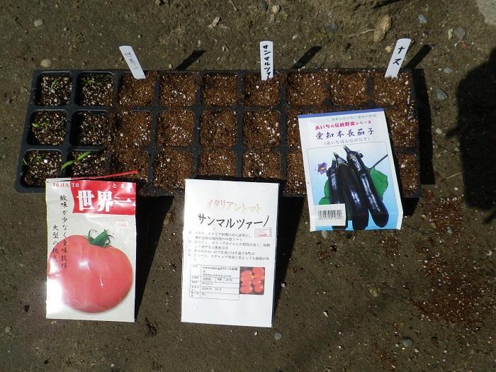 種蒔き1_16_04_09