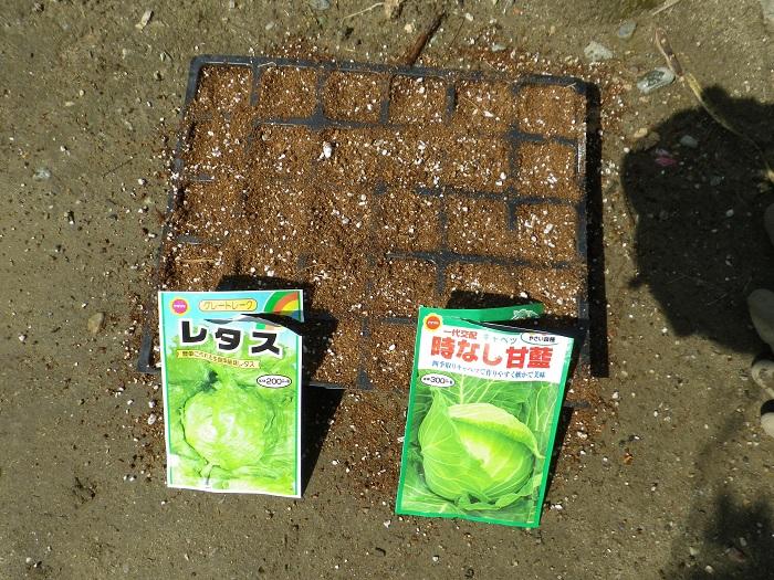 種蒔き2_16_04_09