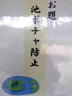 清澄庭園川柳