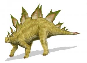 Stegosaurus_BW.jpg