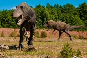 dinosaurs-958017_960_720.jpg