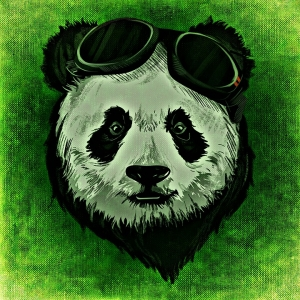 panda-1235264_960_720.jpg