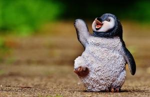 penguin-1437112_960_720.jpg