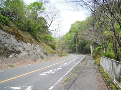 三増峠に向かう道060420