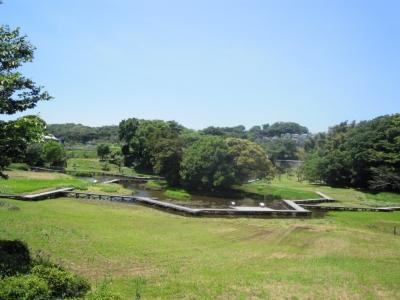 厳島湿生公園160512