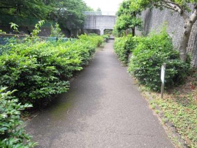 迷い込んだ公園160606