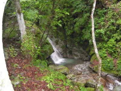滝が見えた160609