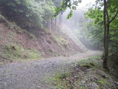 林道に出て160609
