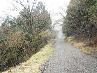 この林道を横切って0414
