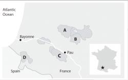 2014南西地図問題
