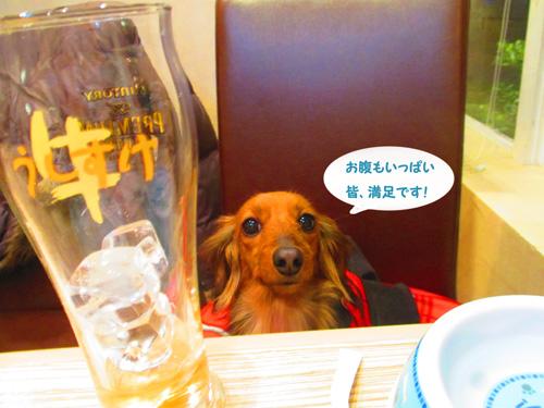 2016-2-daiba128.jpg