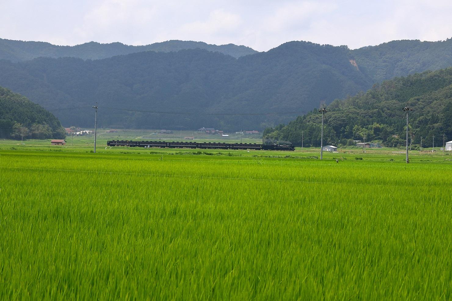 2016yamaguti49.jpg