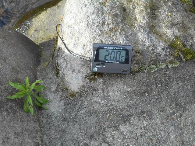 DSCN0852小黒川午後の水温.jpg