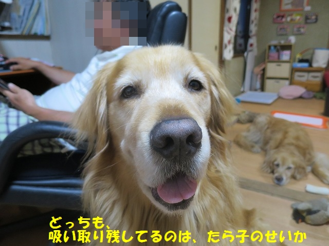 2_201605041952518e8.jpg
