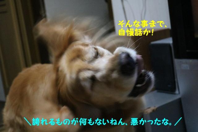 IMG_2878.jpg