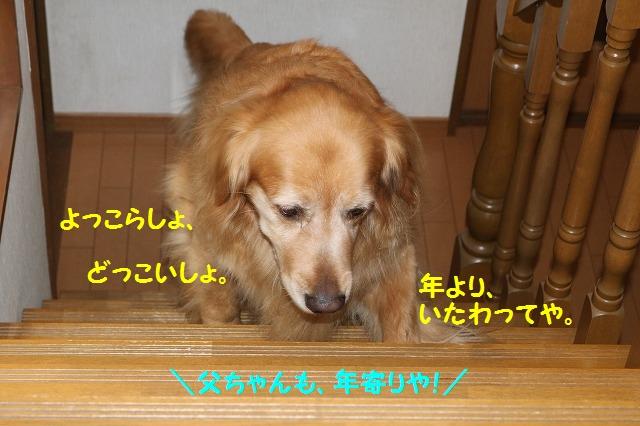 IMG_3328.jpg